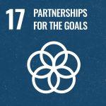 Approfondimento SDG 17 - Slide 1