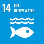 Approfondimento SDG 14 - Slide 1